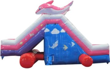 bis-115-giant-outdoor-inflatable-pool-slides-for-sale