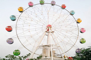 30M High Ferris Wheel For Sale