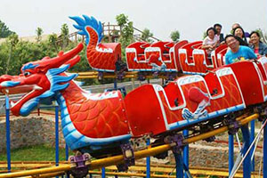 Mini Dragon Roller Coaster For Sale